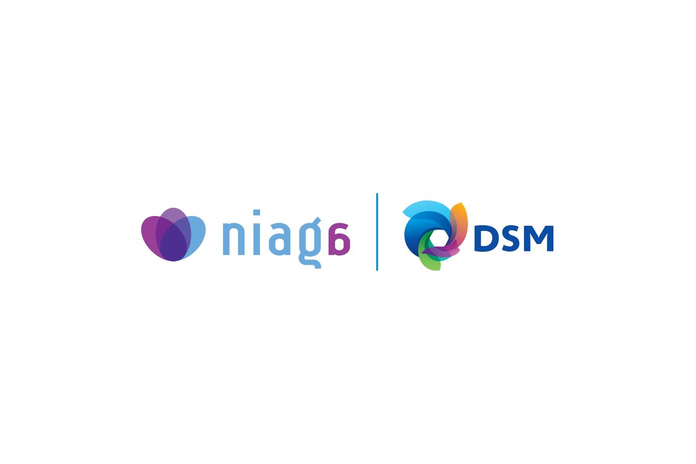 DSM-Niaga
